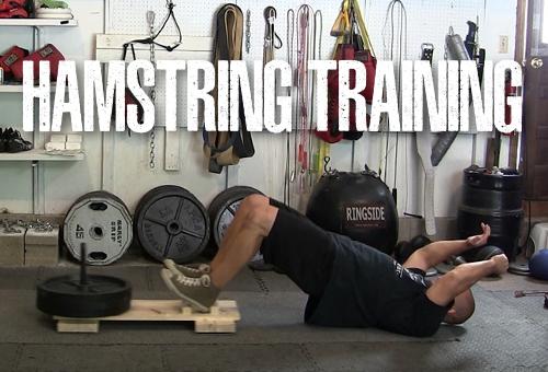 Hamstring Training